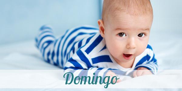 Vorname Domingo Herkunft Bedeutung Namenstag