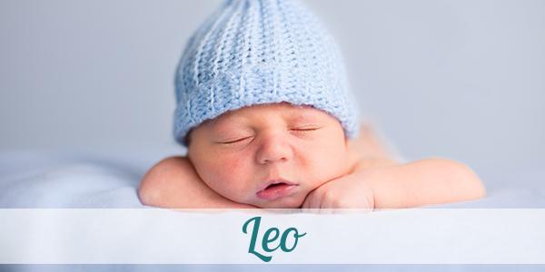 Was Bedeutet Der Name Leo