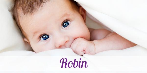 Bedeutung Robin